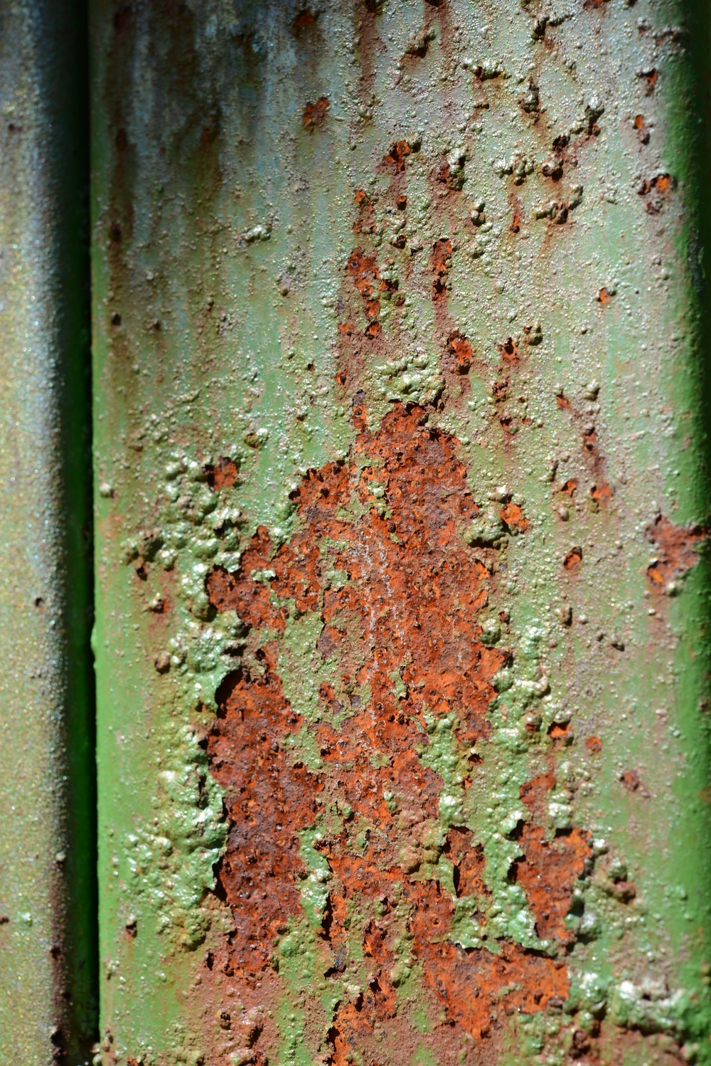 rust and love