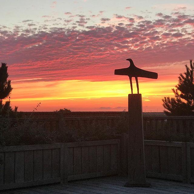 Christopher Marvell sculpture and a Blakeney sunset. #nofilter #tannerandlawson #blakeney #christophermarvell #northnorfolk #sunset #bronze #limitededition #sculpture #blakeneypoint #norfolk