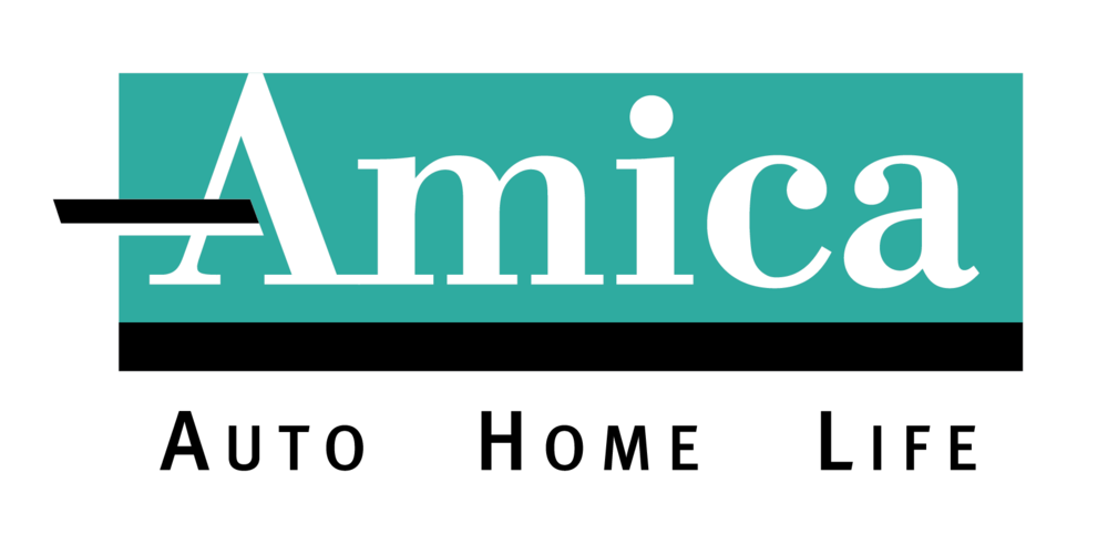 Color Amica Logo black AHL_2C copy.jpg