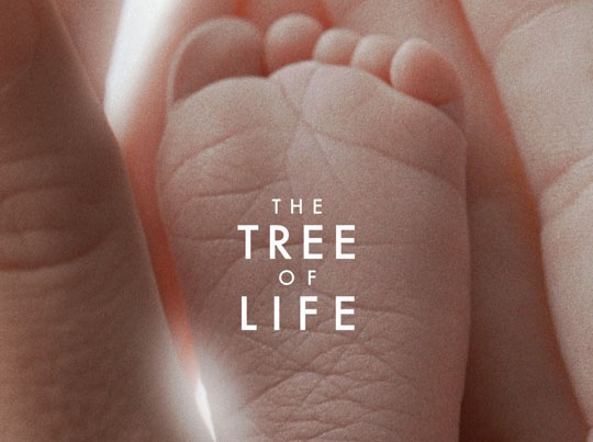 the_tree_of_life_movie_poster_01.jpg