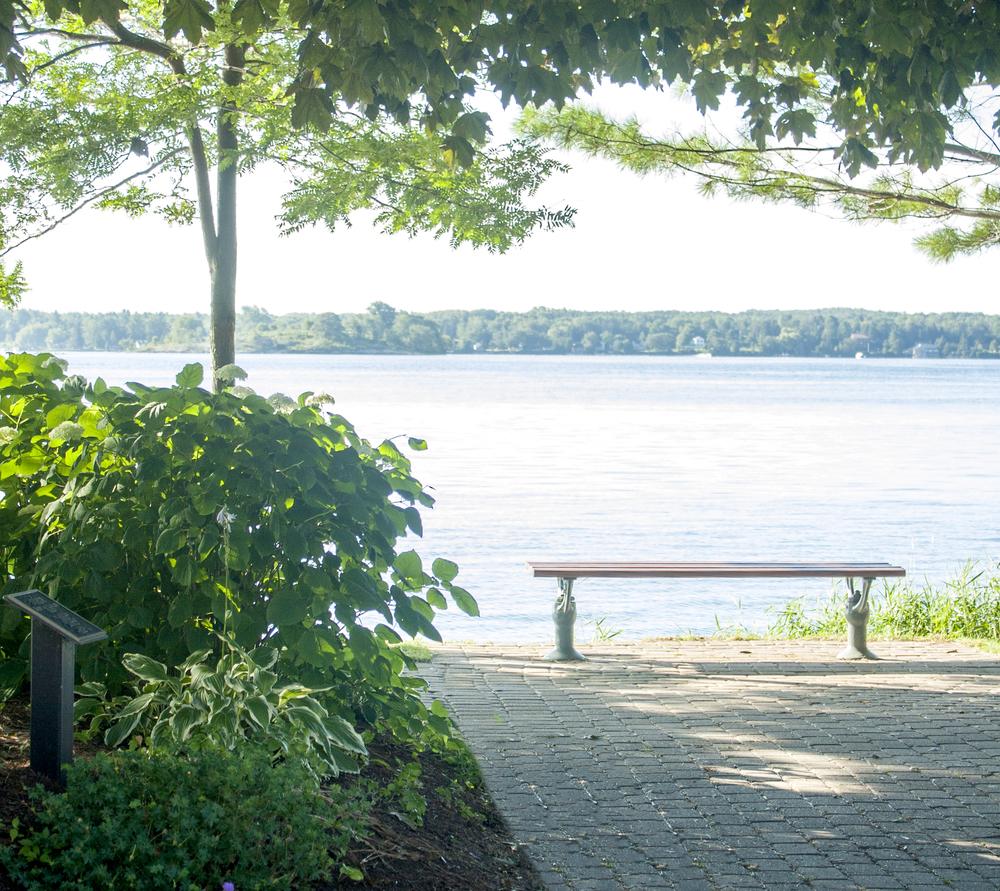 bench water.jpg