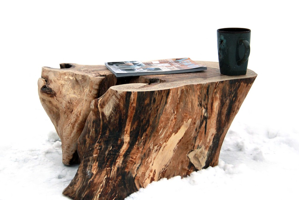 Riverview Design Solutions - Stump Table - Reclaimed Tree - Brockville Ontario.jpg