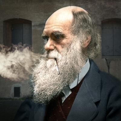 Darwin-BPK.jpg