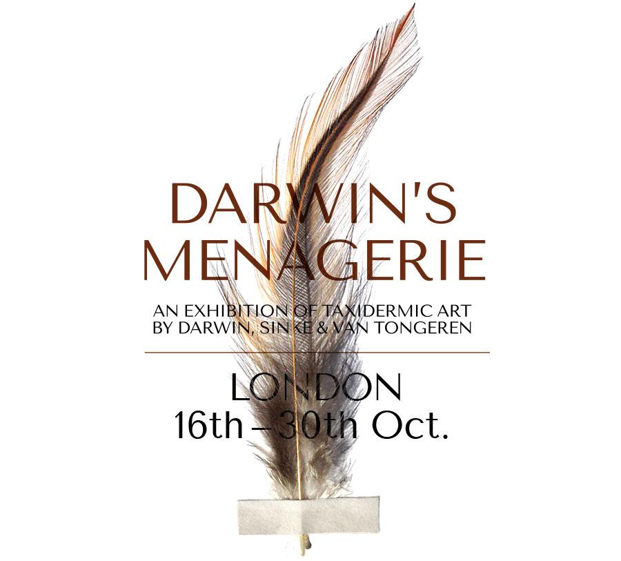 Invite Jamb Darwin Menagerie