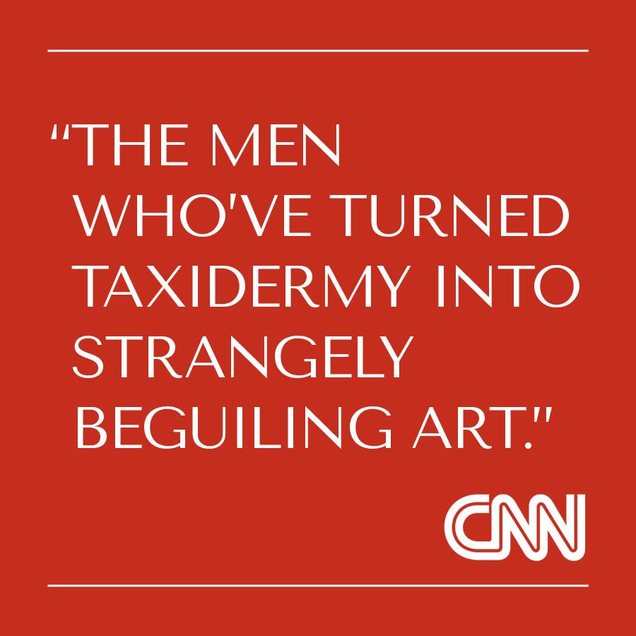 CNN-Press.jpg