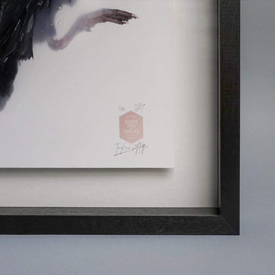 Detail-Frame-2-SQR.jpg
