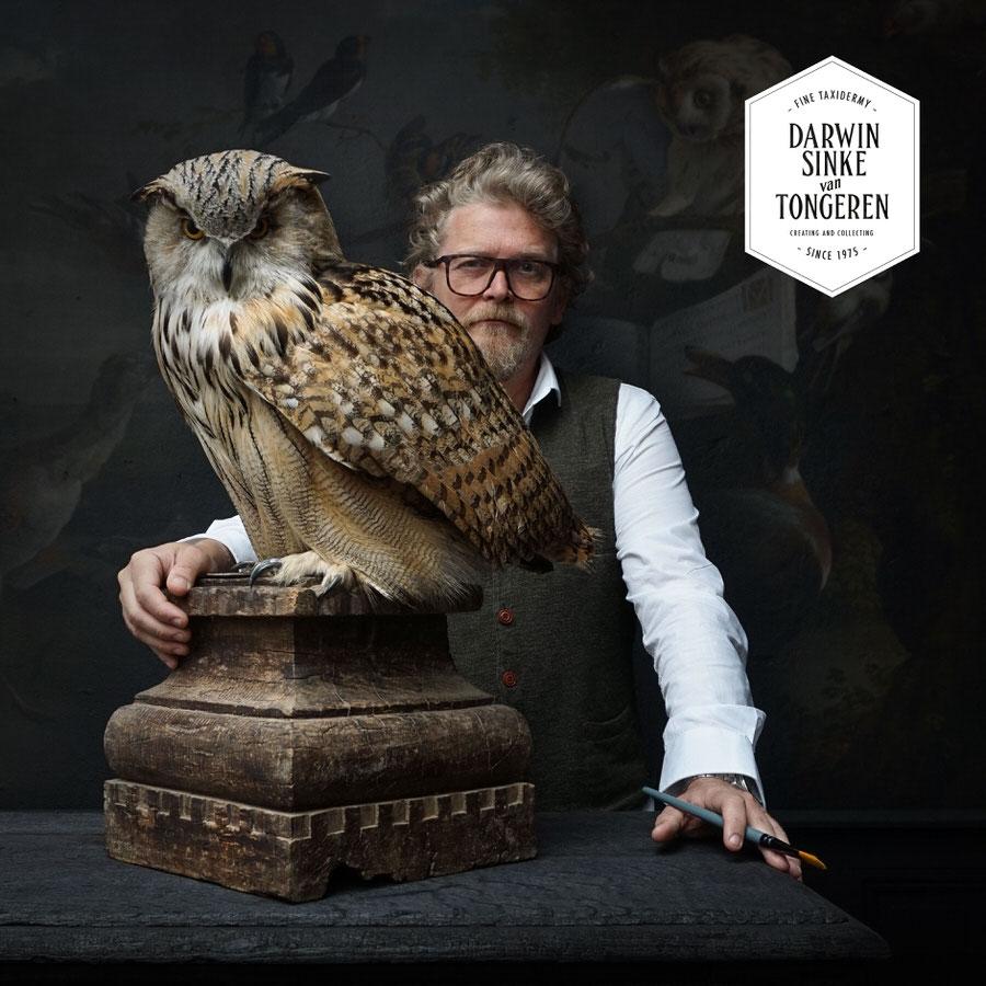 DSvT-Syberian-Eagle-Owl-02.jpg