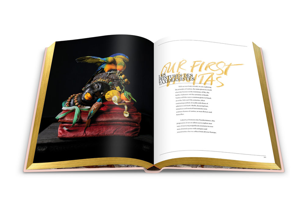 017-DSvT-Our-First-Book-Spread-Les-Peintures-Des-Taxidermistes.jpg