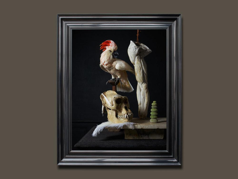 DSvT-Les-Peintures-des-Taxidermistes-6.jpg