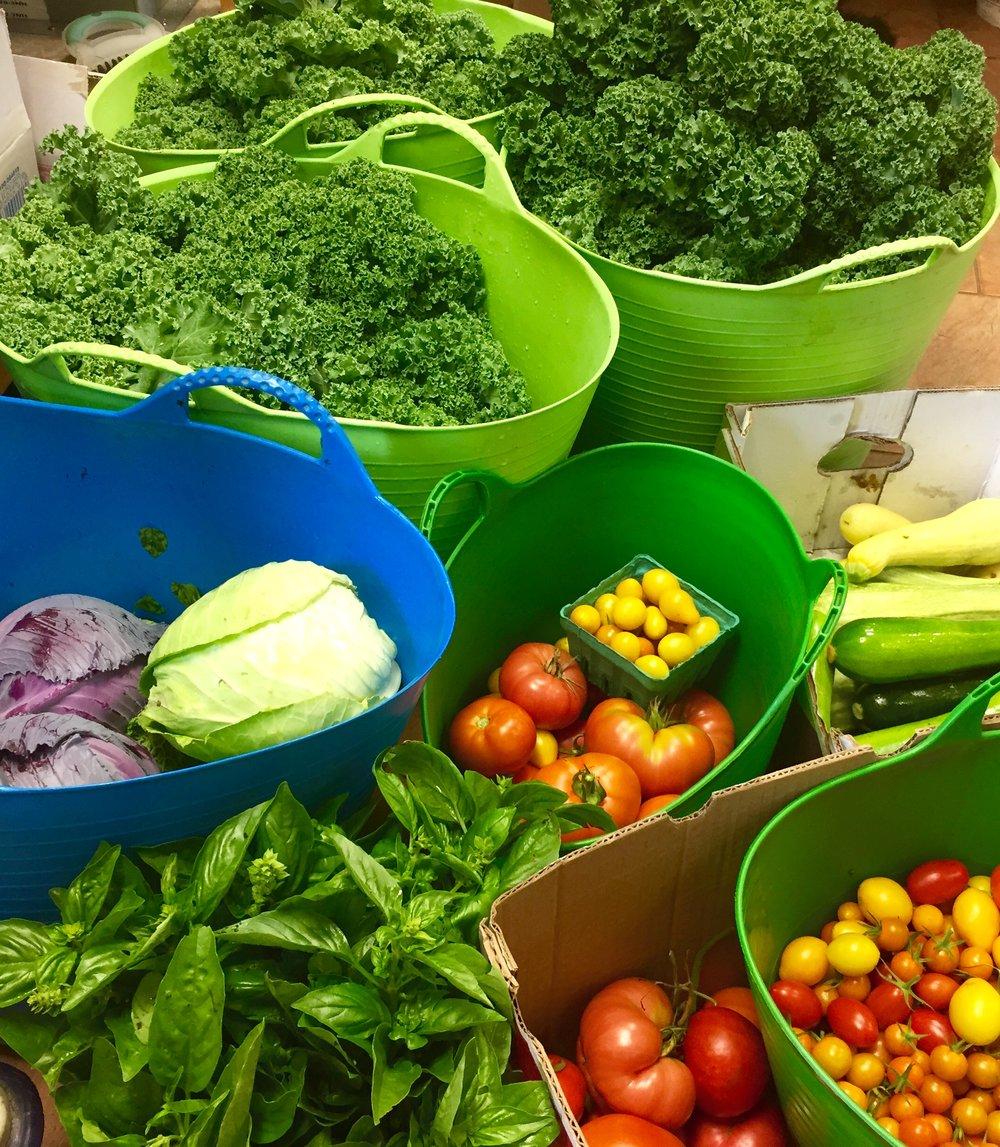 Sweetwater Farm Organics