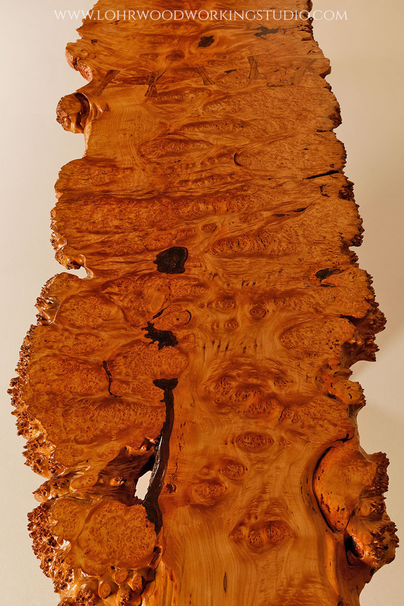 Live Edge Bigleaf Maple Burl Long View.jpg