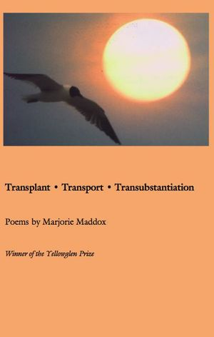 Transplant, Transport, Transubstantiation