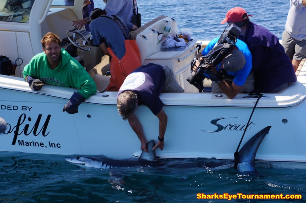 Dr. Greg Skomal and team attach satellite tag to a Mako shark while tournament, NBC and CBS news cameras roll on the action.