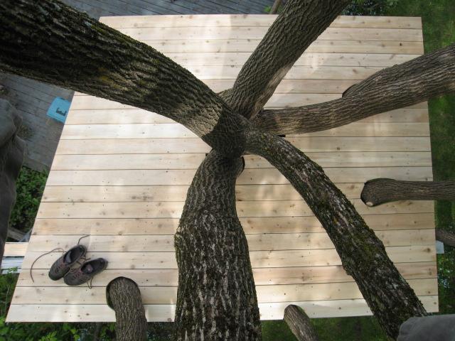 tree house 050.JPG