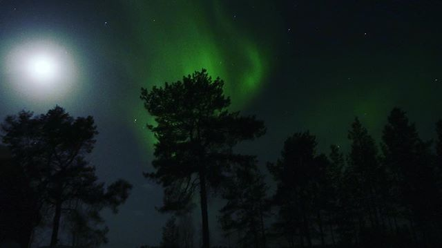 Northern ligh, Pasvik, Finnmark