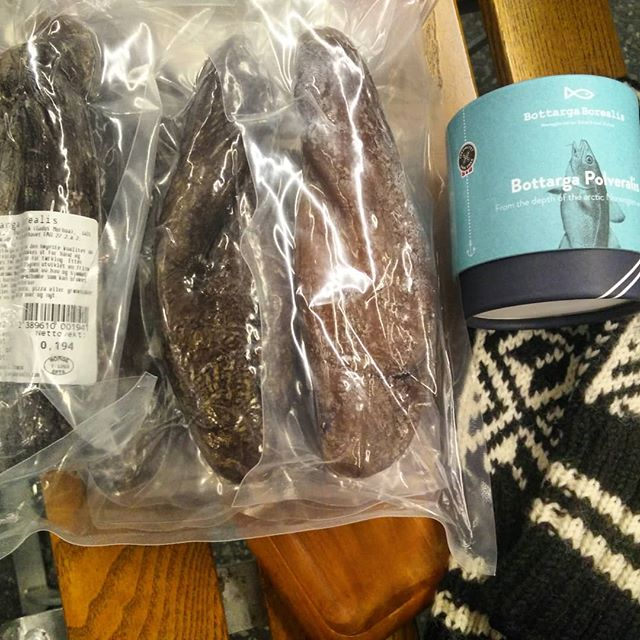 #bottargaborealis  arrives to the #lavvuarcticcamp  Thanks to Lia Berti for her lovely welcoming in Tromsø