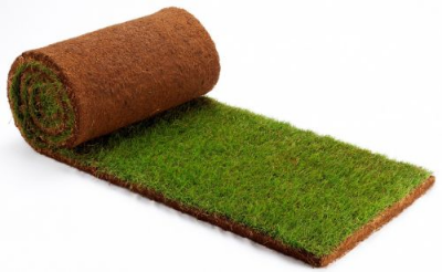 small-sod-roll-grass