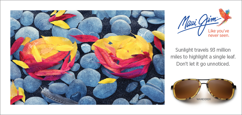 MJ-1827-Fall-Leaves-843x403.jpg