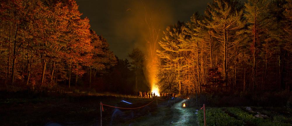 FireyFallNights.jpg