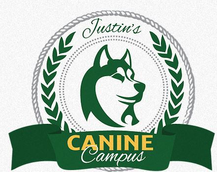 caninecampus.JPG