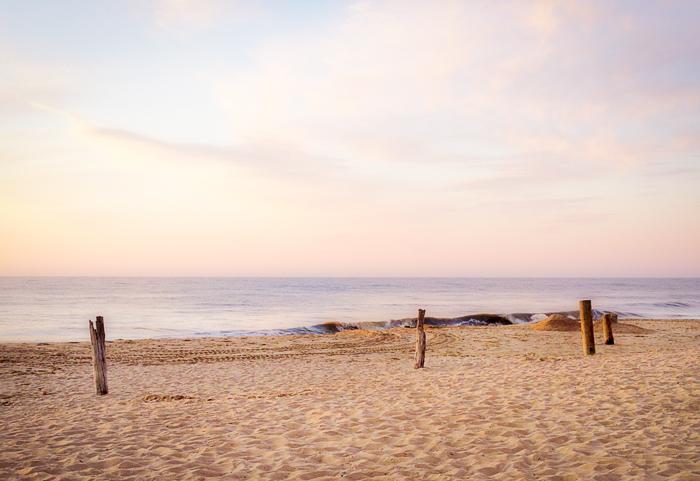Beachpoles.MEGSolo.FinalPrint-2.jpg