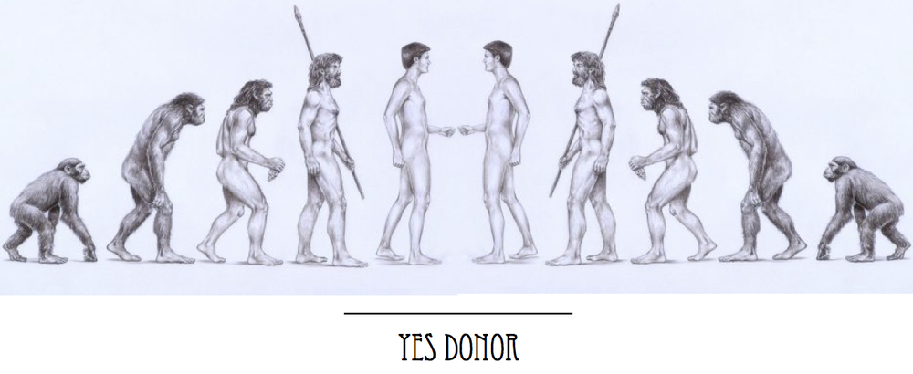 Yes Donor Image.jpg