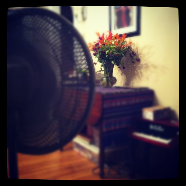 Fresh flowers, fans, piano, & colors. This snapshot encapsulates our day pretty well (Taken with  Instagram )