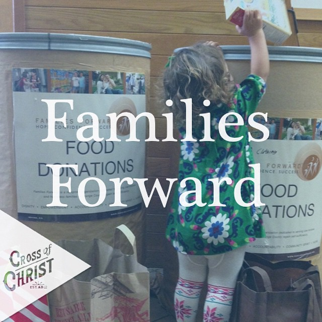 In November we partnered with Families Forward to hold a food drive to benefit families in difficult circumstances in Orange County.