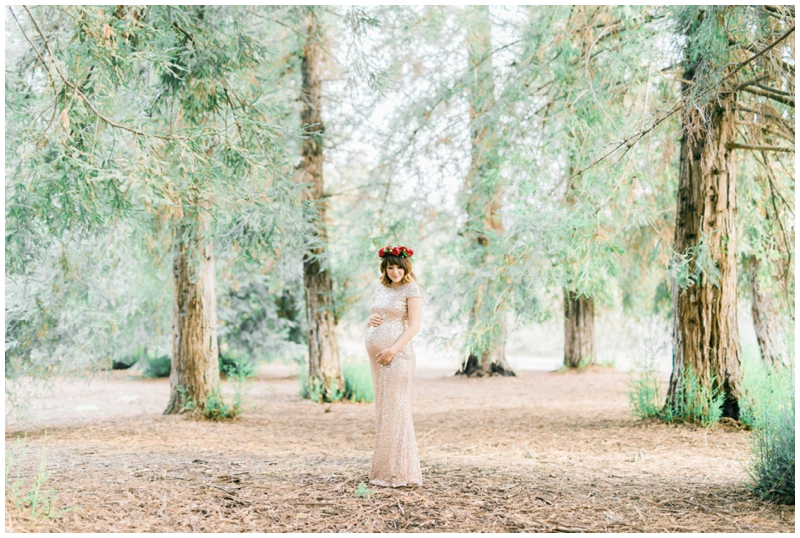 los-angeles-maternity-photographer_0007.jpg