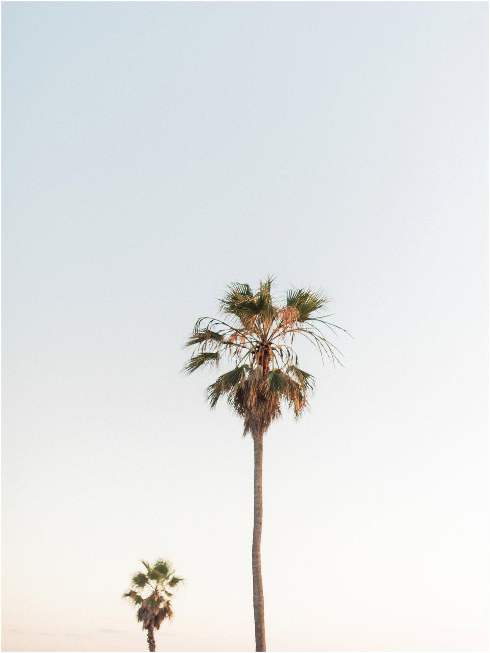 balboa-park-san-diego-engagement_0008.jpg