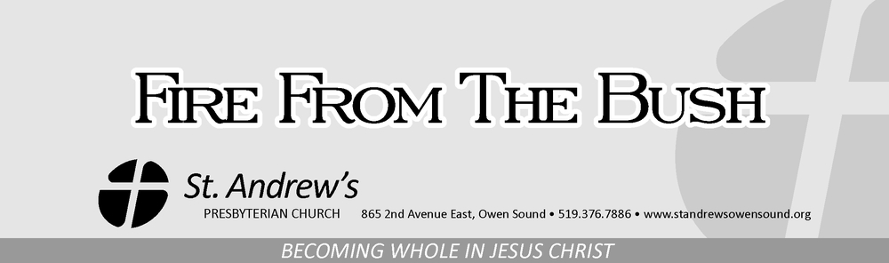 St. Andrew's Quarterly Newsletter