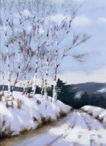 birch road.jpg