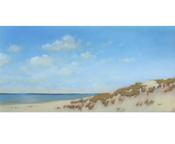 leland dunes.jpg