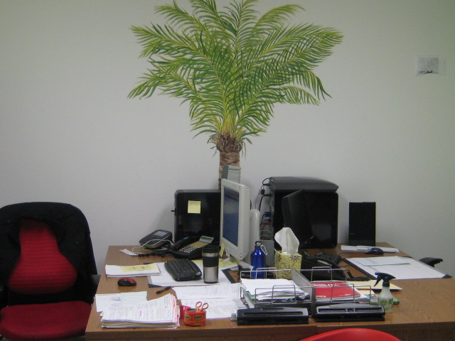 Tropicana Office.jpg