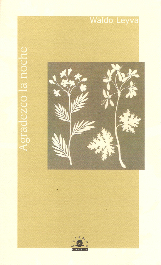 WaldoLeyva,Agradezco la noche 2006, 56 p, 23 cm ISBN: 968-9045-03-2, 970-802-006-0
