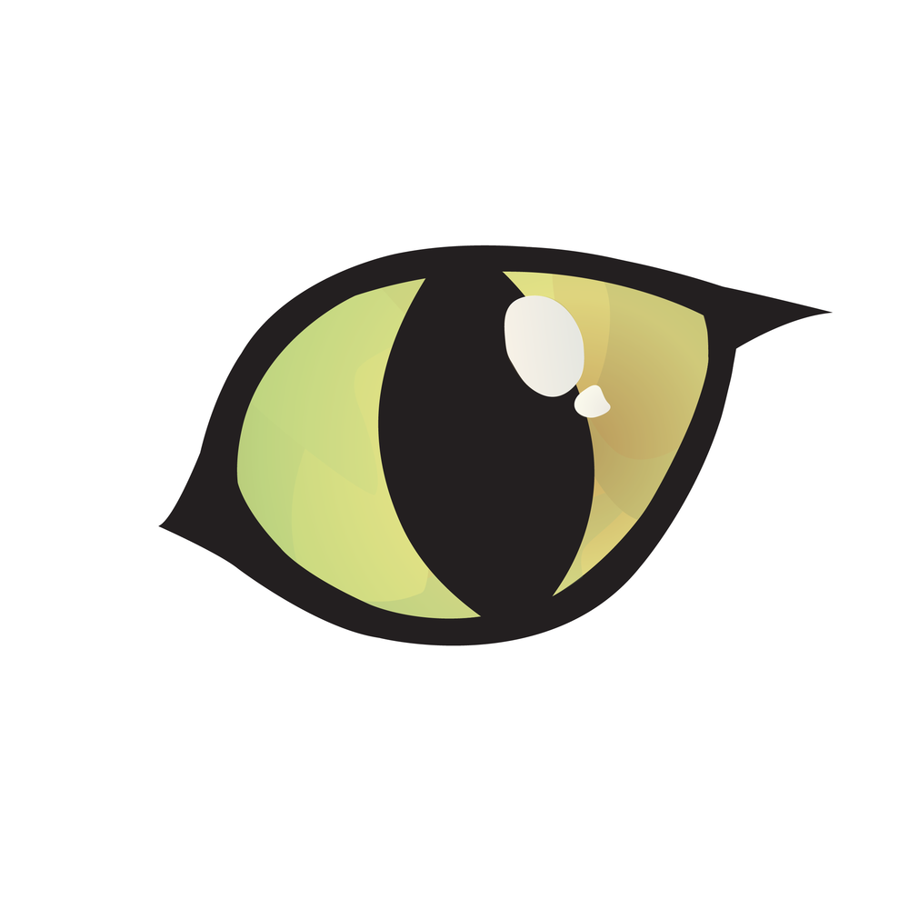 Logo Design | Original Ali Schneider Logo, Cat Eye Inspired