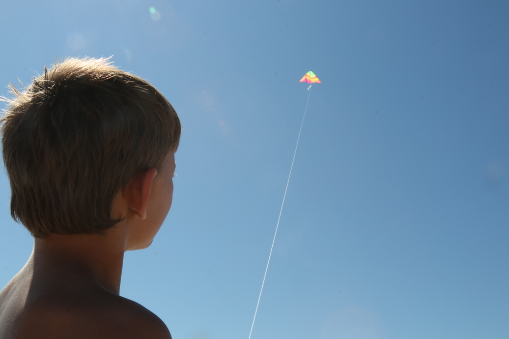Boy with [kite]