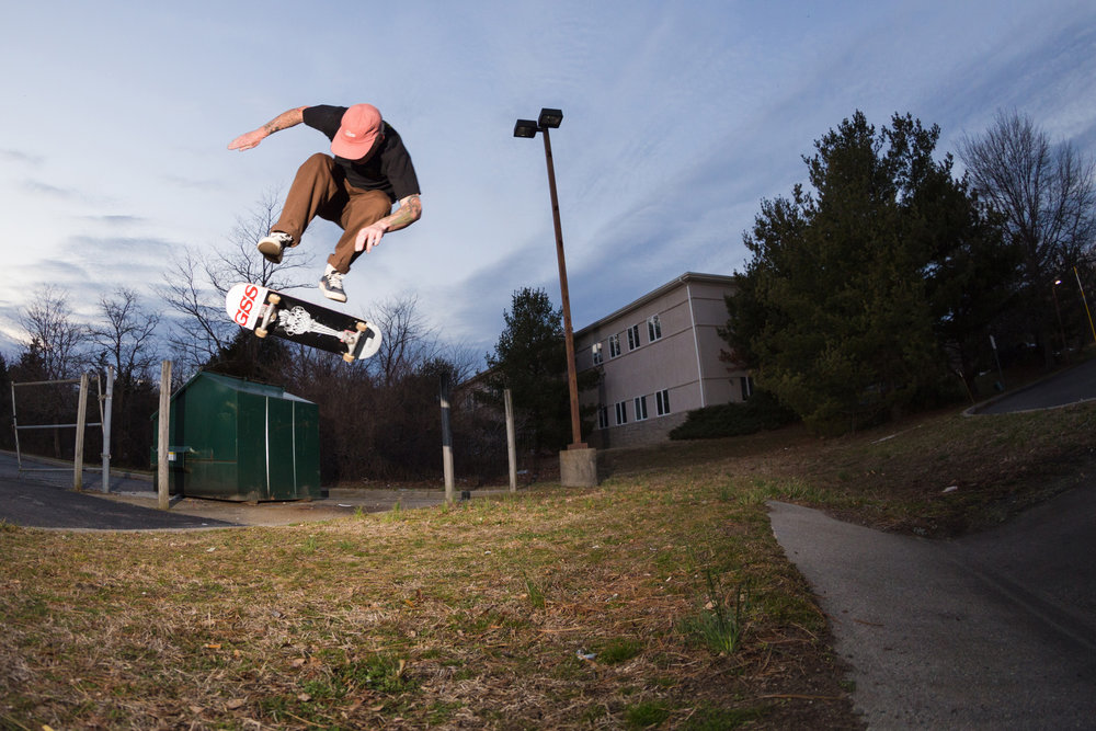 Ian McGraw, backside heelflip.