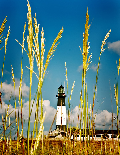 lighthouse%20web.jpg