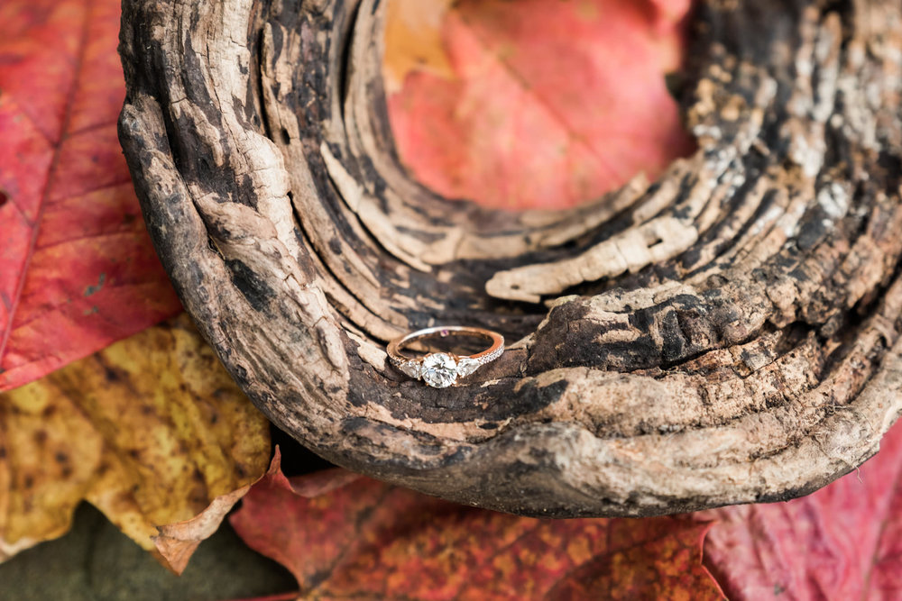 Emily&Daniel_Engagement_Blog_0009.jpg
