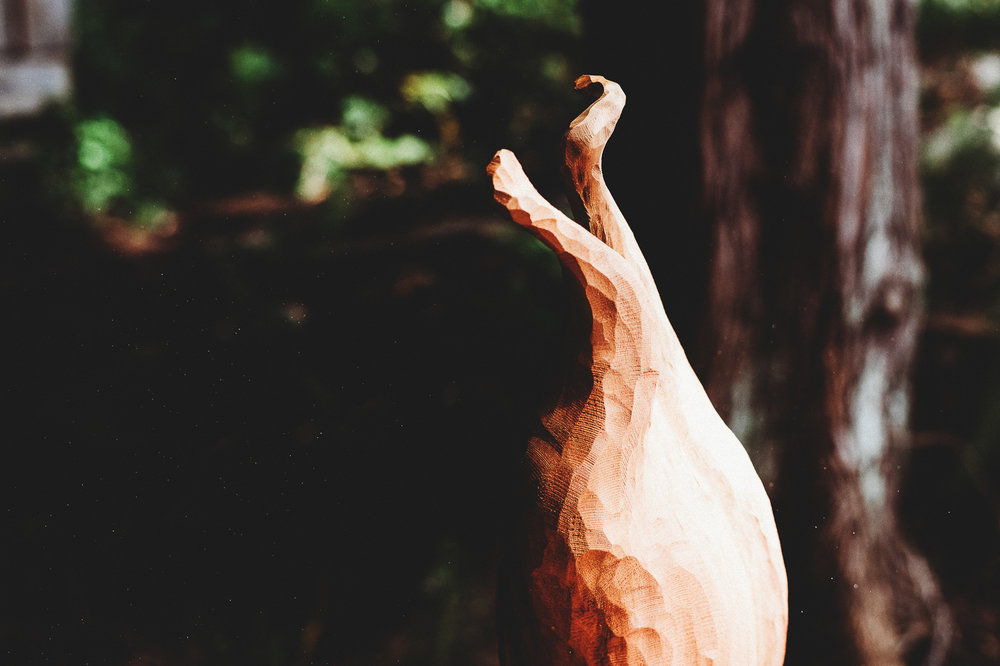 Pender Island Photographer - Amber Briglio Photography - the heart of pender project part 2 (20 of 45).jpg
