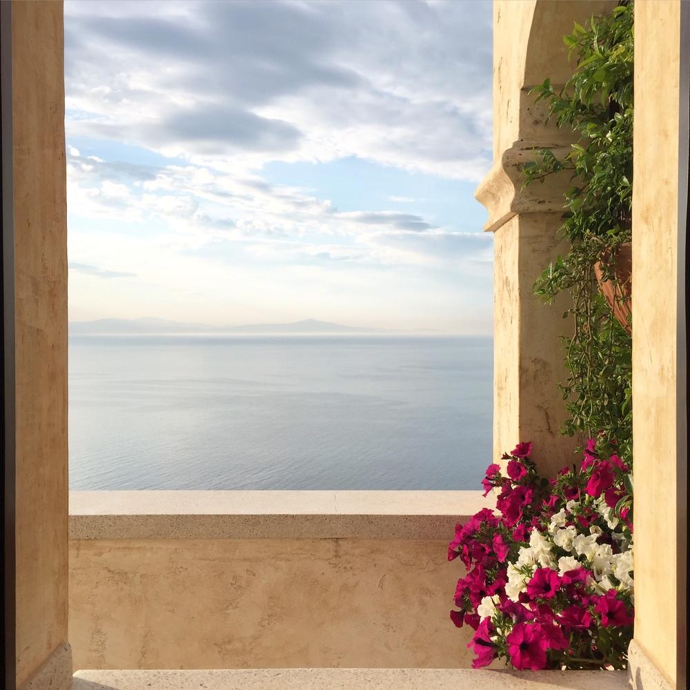 monastero santa rosa | molly pollet