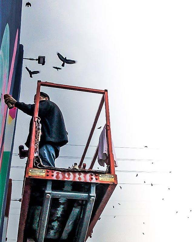 Spirit animals looking over us.  Muralist: @dytch66 Photo by @roy.munson.art