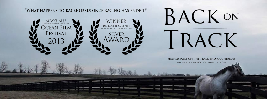 Facebook Banner for the short version of Back on Track