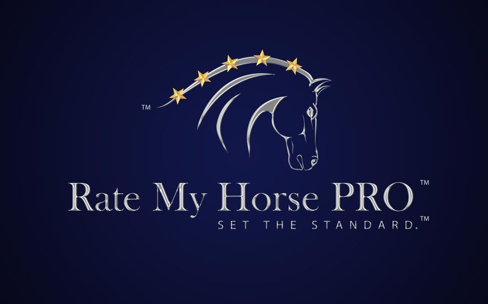 custom-horse-logo-design-by-equestrian-logo-designer-eq-graphics.jpg