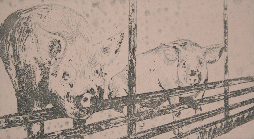 Pigs Before the Slaughter