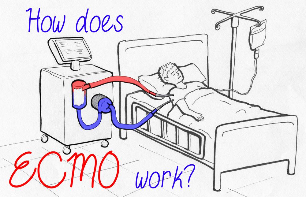 Video still from final animation