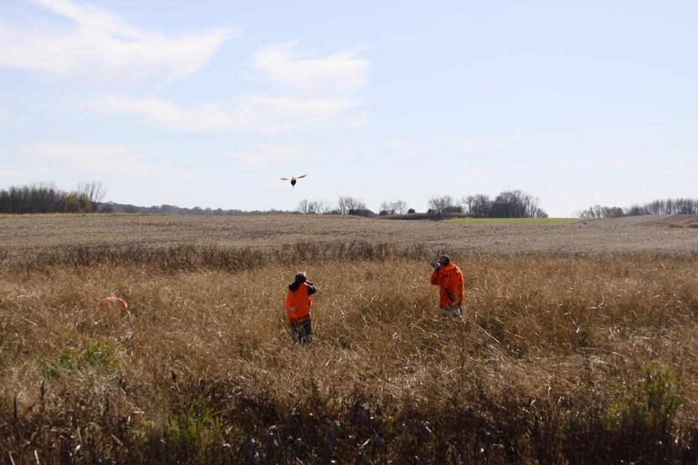 2011-Wadsworth-Pheasant-Hunt-057-1024x682.jpg