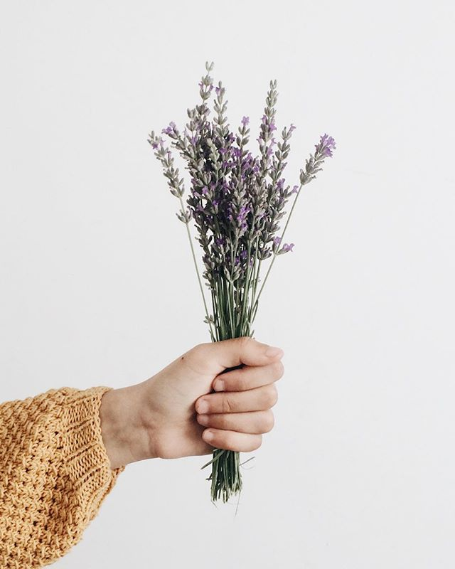 We'll be popping up at the Womxn of the Future spring market on April 28th @ivywildschool. We're bringing back the blooms with mini bouquets, unique houseplants and Japanese artisan goods. Hope to see you all there! 🌿 — #womxnofthefuture #artandarticle #coloradosprings #ivywildschool #plants #madeinjapan #japanesedesign
