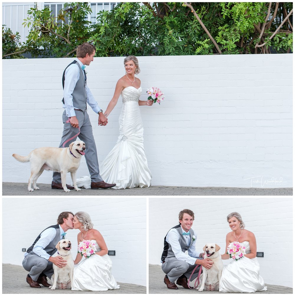 Bride and Groom and puppy
